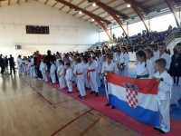 Članovi Karate - do kluba Požega osvojili 24 medalje na turniru u Brčkom