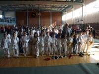Članovi Judo kluba Judokan osvojili 10 medalja na Međunarodnom turniru u Pisarovini