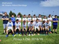 Mlađi pioniri Dinama (Vidovci Dervišaga) osvojili naslov prvaka 1. Županijske nogometne lige 2018./2019.